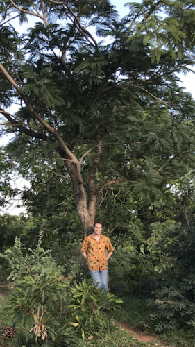 Eli standing in front of an ALB tree