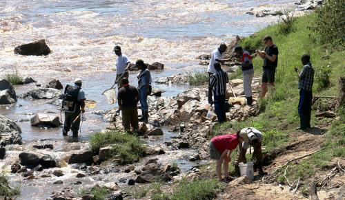 Image of people fishing