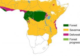 Map of Africa with deforestation graphic